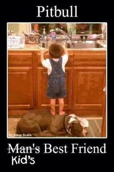 Pitbulls a kids best friend