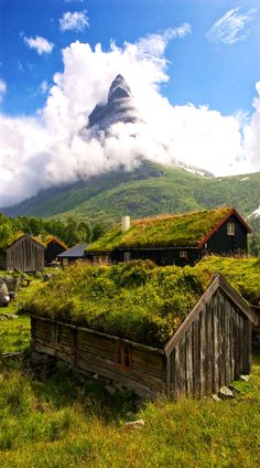 Grass Roof Houses ~  Renndølsetra, Norway