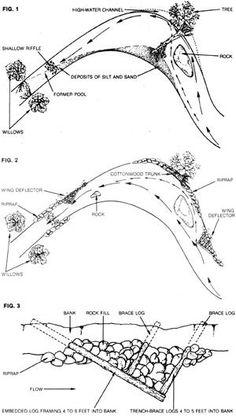 Figure 2. Vegetated Riprap or Joint Planting composed live