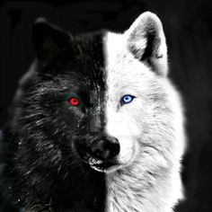 DeviantArt: More Like Skoll And Hati _ Off-White by Anchy-Wolf
