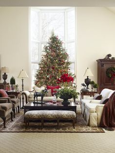 Decorating: Christmas Trees | Traditional Home note Alison's planted urn, boxwood balls in silver trophy cups, and the balance of this elegant room.