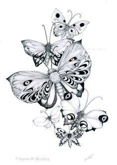 Butterflies Pencils by *JoannaBromley on deviantART