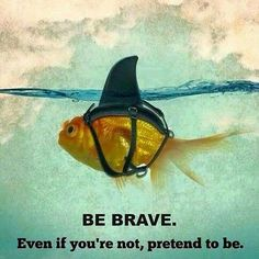 In order to be successful you have todo a lot of things that take you out of your comfort zone and make you uncomfortable. Take a deep breath be brave and do it anyways and you'll eventually end up where you want to be