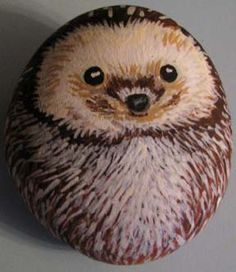 Hedgehog rock. He is so cute!