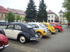 Ladybugs parade in Old Town Center :)) Ladybugs, Old Town, Romania, Car, Old City, Automobile, Ladybug, Autos, Lady Bug