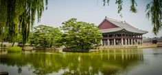 Your travel guide to South Korea.
