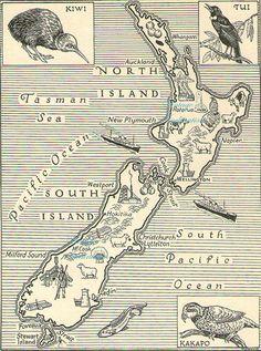 1950s Antique Vintage NEW ZEALAND animals map original b/w map for framing. $12.50, via Etsy.