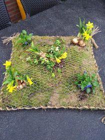 Chicken Wire Art, Chicken Wire Crafts, Container Gardening, Gardening Tips, Rainforest Plants, Fleur Design, Growing Gardens, Christmas Greenery, Yard Art