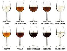 ¿Cuántos tipos de vino de Jerez hay