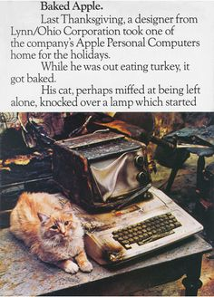 """1981 """"Baked Apple"""" Ad (1/2)."""