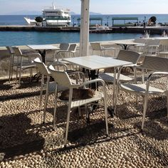 Cats of Spetses Outdoor Furniture Sets, Outdoor Decor, Dining Chairs, Island, Explore, Cats, Home Decor, Gatos, Decoration Home