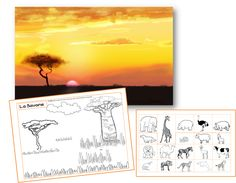 La savane - Saperlipopette Afrique Art, 2nd Grade Art, Science Projects For Kids, Social Studies Activities, 7 Continents, Arts Integration, Safari Theme, Circle Of Life, Art School