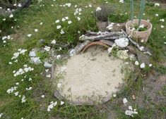 Zu Gast im Hortus Campanularum, dem Garten der Glockenblumen – Hortus Girasole Permaculture, Backyard Landscaping, Projects To Try, Landscape, Outdoor Decor, Nature, Plants, Gardens, Ideas