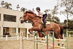 horseriding horserider equine Holy and PSL by the Riding Hats, Horse Riding, Riding Helmets, Riding Clothes, Riding Gear, Riding Outfits, Equestrian Outfits, Equestrian Style, Equestrian Fashion