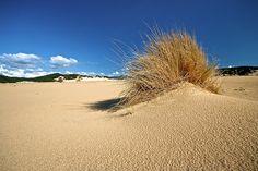 Piscinas - Sardinia