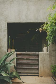 puerta madera entre muro cemento