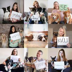 Dog Training, Photo Wall, Polaroid Film, Cute, Photography, Instagram, Youtube, Photograph, Photograph