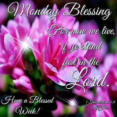 35+ Latest Monday Blessings Kjv Verses Pictures - Poppy Bardon | Blessings  Pictures