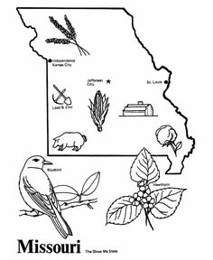 Missouri State outline Coloring Page