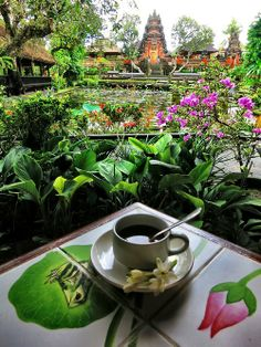 Coffee with a view. Ubud, Bali.     Go to passportsandchampagne.com for more from our travel blog