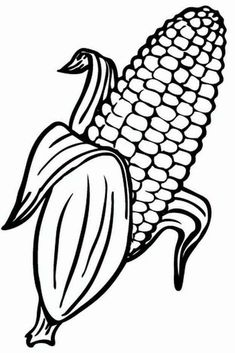 Free Sweet Corn Coloring Pages Printable - Free Coloring Sheets Originally from the mountainous valleys of Mexico, corn has evolved over nine millennia. First consumed in its primary form, the teosinte, corn will undergo sig Vegetable Coloring Pages, Fruit Coloring Pages, Colouring Pages, Coloring Pages For Kids, Coloring Books, Corn Drawing, Image Fruit, Free Coloring Sheets, Color Activities