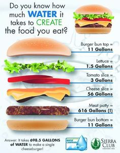 It sure takes a LOT of water to make a hamburger! #MyVeganJournal
