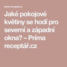 Jaké pokojové květiny se hodí pro severní a západní okna? – Príma receptář.cz