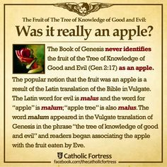 Did Eve really eat an apple? Learn more.