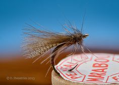 From Catskill-style dry flies to bottom dredgers, and everything in between..