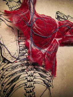 Designer and illustrator Dan Beckemeyer created this wonderful exploration of anatomy by first illustrating a skeletal structure, then stitching a cardiovascular system, and finally adding hand-felted muscle mass. Beautiful work.
