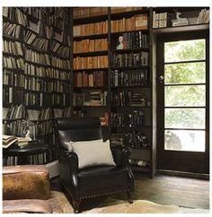 Library den