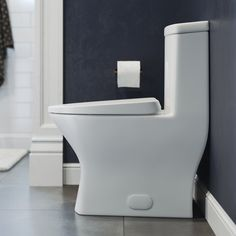 Sublime II Dual-Flush Elongated One-Piece Toilet (Seat Included) & Reviews | AllModern Contemporary Toilets, Wax Ring, Toilet Sink, Wall Hung Toilet, Small Toilet, Chair Height, All Modern, 1 Piece, Small Spaces