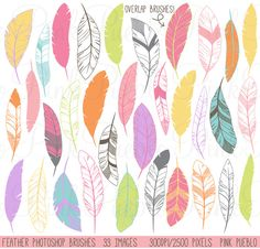 Check out Feather Silhouette Photoshop Brushes by PinkPueblo on Creative Market