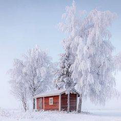 Finnland 🇫🇮 Winter Szenen, Winter Is Here, Winter White, Frozen In Time, Winter Beauty, Winter Pictures, Winter Solstice, Background Pictures, Beautiful Landscapes