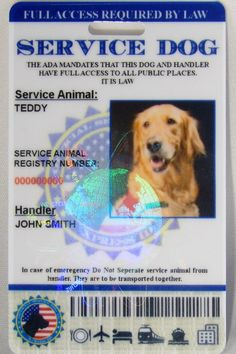 Holographic Service Dog ID Card Vertical