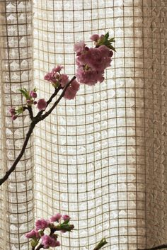 Stroheim's Tiber is a deconstructed linen sheer that features extraordinary surface interest. Two layers of sheer linen are stitched together with a fine grid and the top layer is frayed and tattered.