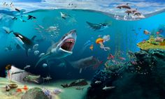 Digital illustration of underwater sea life, dolphins above water, and penguins on ice