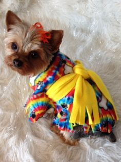 TYE DYE Groovy Pet Poncho / Dog Clothes & BOW by valygal on Etsy, $9.00