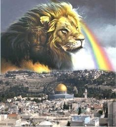 Jesus Christ. Messiah. Lion of Judah. God became flesh (book of John) and dwelt among us. First came as a Servant and Saviour. Soon He will return as the Lion of Judah. Judge and Redeemer.
