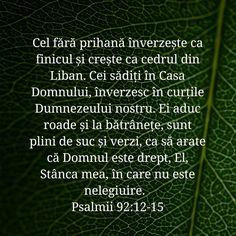 Ps.92:12-15