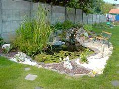Quelle taille et forme choisir pour créer un bassin au jardin ...