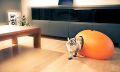 alpeti.cz - design pro psy a kočky