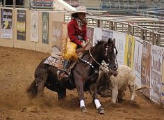 Cutting horse and rider in action.