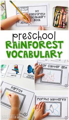 Rainforest Facts For Kids, Rainforest Preschool, Rainforest Crafts, Rainforest Theme, Rainforest Animals, Rainforest Project, Preschool Curriculum, Kindergarten Activities, Science Activities