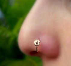 Nose Ring Hoop - Nose Piercing - Cartilage Tragus Earring -14K Solid Gold - 20G to 16G Flower. This listing is for a single 14k solid gold flower hoop nose ring. Can be used as a hoop nose ring, tragus earring, helix earring or cartilage earring. Available in 14k solid yellow gold, 14k solid rose gold or 14k solid white gold. Please select your preferences in the options at the top right of this page.