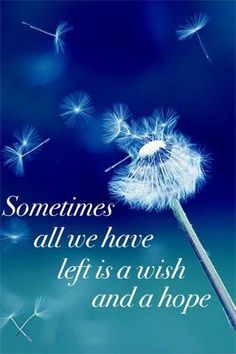 Making wishes...