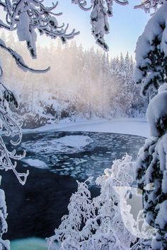 I love this place! Oulanka National Park... Finland :)