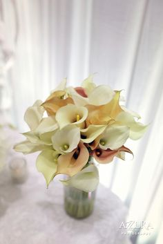 Nothing I love more than flowers; calla Lilies.