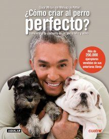 How to Raise the Perfect Dog by Cesar Millan & Melissa Jo Peltier Pets 3, Pet Dogs, Dog Cat, Dogs And Puppies, Cesar Millan, Cocker Spaniel, Miniature Schnauzer Black, Animals And Pets, Cute Animals