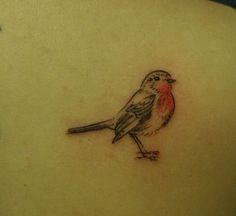 Robin Tattoo Photo:  This Photo was uploaded by AdiGreen. Find other Robin Tattoo pictures and photos or upload your own with Photobucket free image and ...